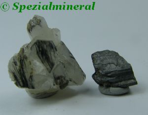 sterryite1